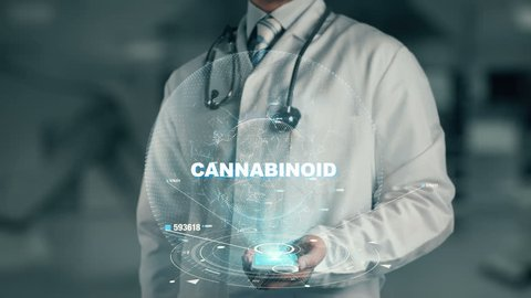 Doctor holding in hand Cannabinoid