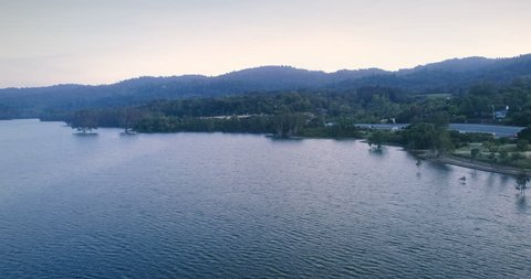 Aerial: trees growing out of the water in Lexington Reservoir, Los gatos, Silicon Valley, USA