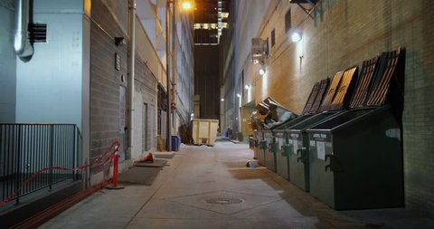 A nighttime static background plate of an alley in a large city's downtown district. Day/night matching available.