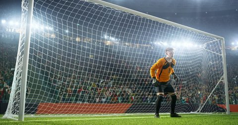 Soccer goalkeeper jumps and fails to catch balll on a professional soccer stadium. Stadium and crowd is made in 3D and animated