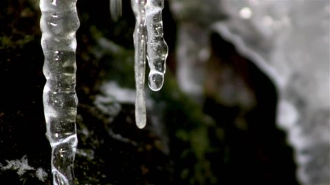 icicle drips,icicle melts