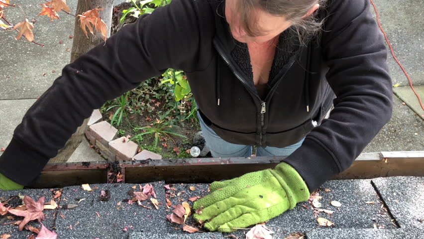 4K HD video of Older female on a ladder cleaning autumn leaves out of rain gutters. A debris cloggedgutter cancause a leaky roof or water damage to the interior or exterior of your home.