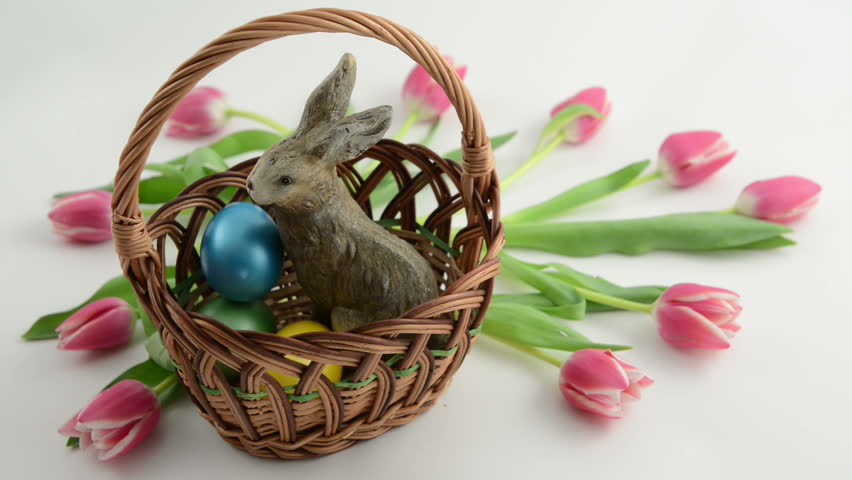 Putting easter eggs in basket with easter bunny and pink tulips putting easter eggs in basket with easter bunny and pink tulips around stock footage video 3542201 shutterstock negle Gallery
