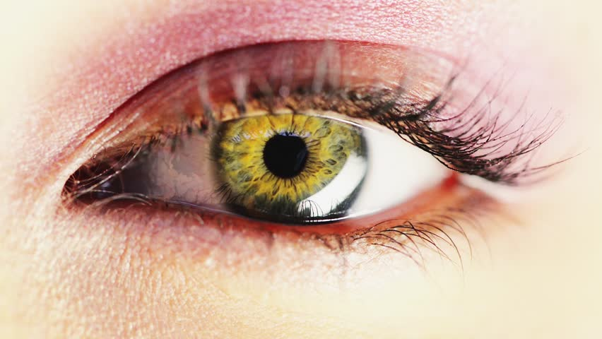 Stock Video Clip Of Macro Close-Up Eye Blinking  Shutterstock-4421