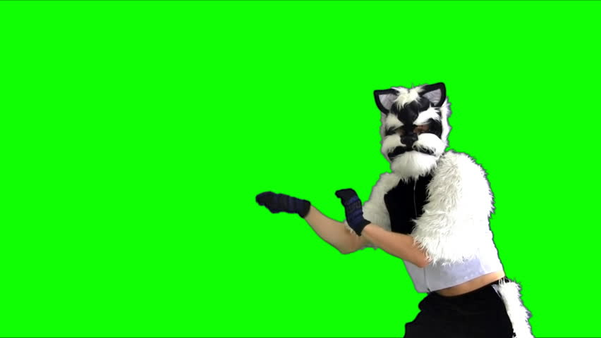 dancing cat puppet on a green background