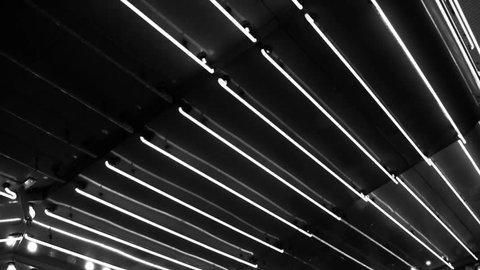 Vintage Neon Lights of Las Vegas