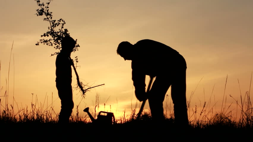 Father and son planting a tree. Sunrise. Silhouette. Spring. | Shutterstock HD Video #3863345