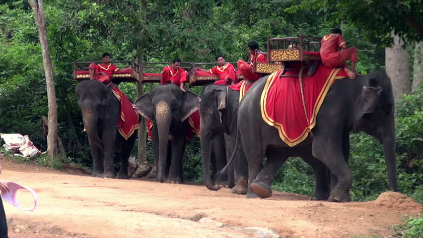 SIEM REAP, CAMBODIA - CIRCA JUNE 2011 - Elephant riders rest on elephants at the  Phnom Bakheng entrance, one of Angkor Wat temples.