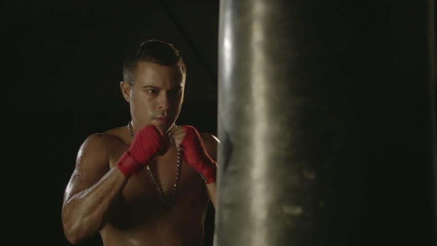 Header of Boxer