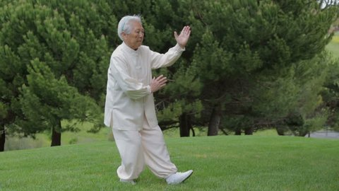 78 Old Asian Chinese Female Practicing Tai Chi at outdoor park under sunny day