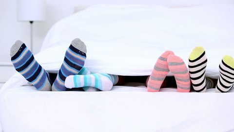 Striped Socks Stock Video Footage - 4K and HD Video Clips