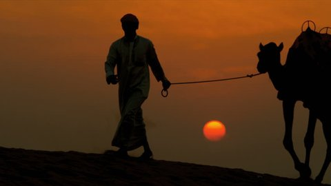Arab male traditional headdress robe walking his camels over desert sand dunes silhouette sunset shot on RED EPIC