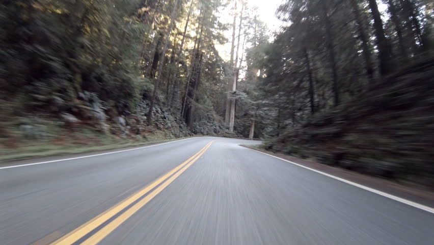 View driving on Highway 199 through the Jedidiah Smith Redwoods State Park in California