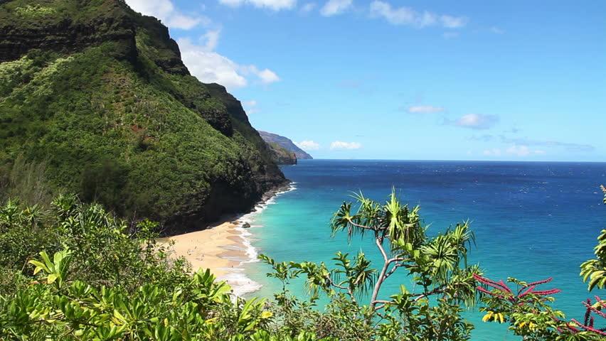 Perfect Tropical Beach In Hawaii