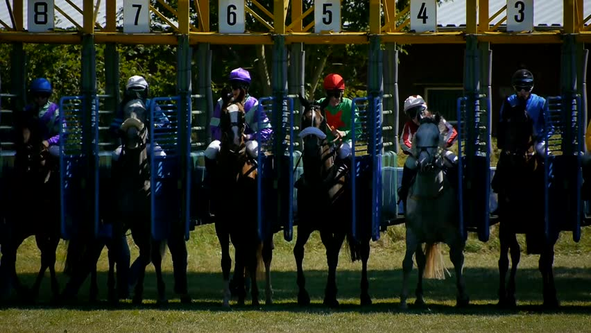 SAARBRÜCKEN - AUG 15, 2013: Horse racing in Germany. Part 5. Starting gate (Slow Motion)