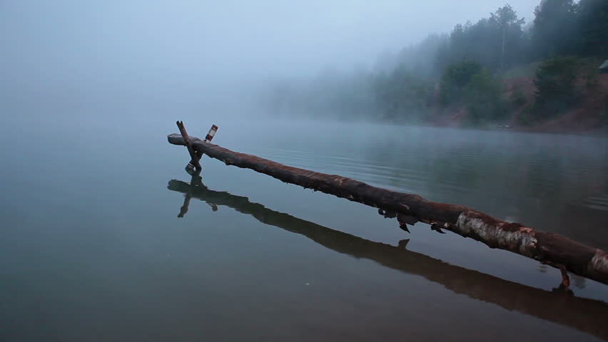 Foggy morning on the lake. Pier from tree trunk 1920x1080 hd video