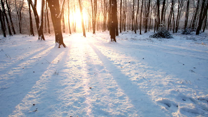 Time lapse of snowy scene in a forest with sun setting and shining through the trees.