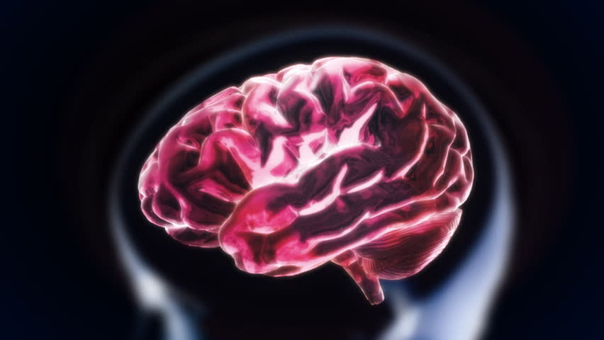 The Crystal Brain Inside the Stock Footage Video (100% Royalty-free)  4572131 | Shutterstock