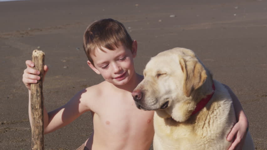 Young boy and dog at the beach
