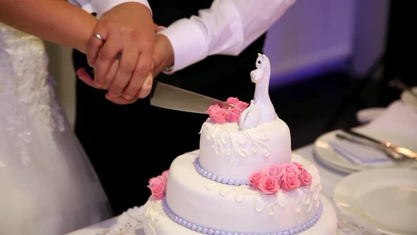 three layer wedding cake. Wedding couple cuts wedding cake. Sequence
