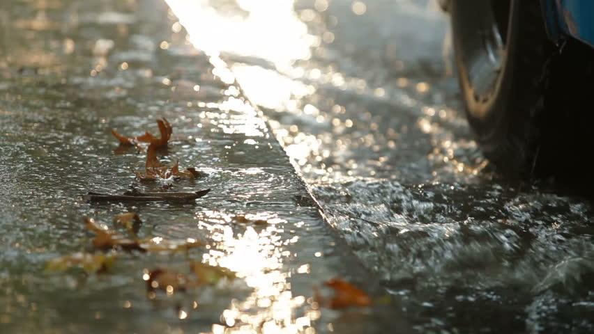 Autumn heavy rain at bus stop