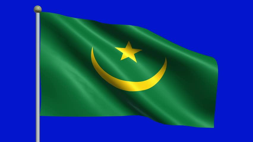 Flag Of Mauritania Animation Loop | Shutterstock HD Video #5009561