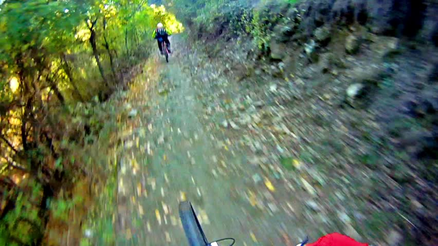 Mountain Bike Video: a Single Track in the Forest - Stock Video. Riding a