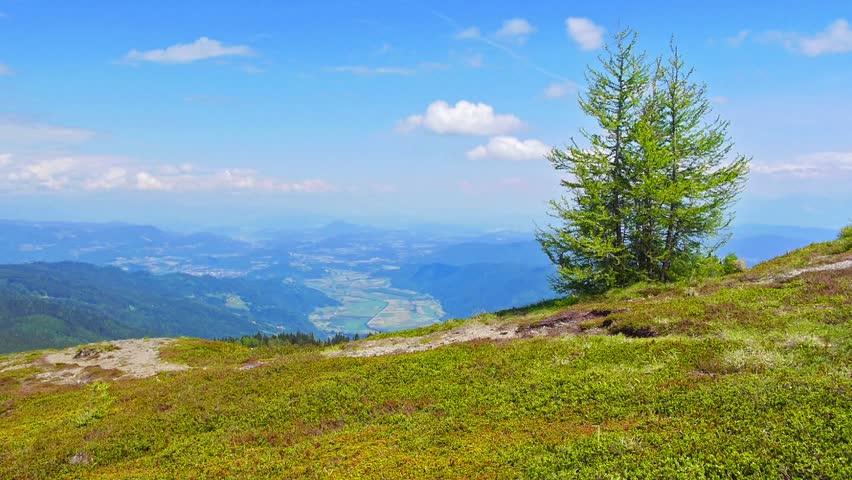 Summer mountain landscape, Austria.