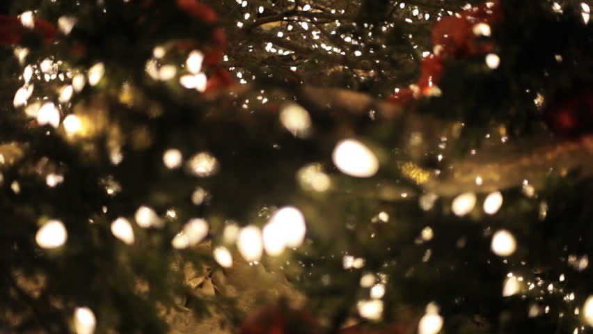 Tilt Up Close Up Of A Large Public Display Christmas Tree Outdoors With  Lights And Decorations