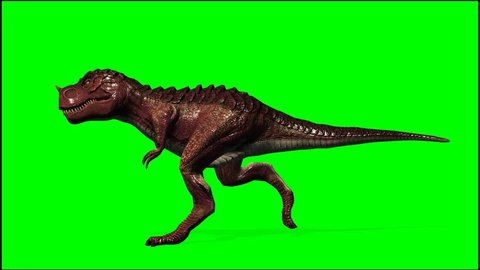 T Rex Dinosaurier  run - seperated on green screen