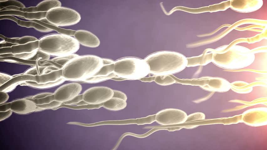 Swimming sperm video White woman