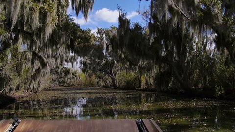 Passenger's perspective of riding an airboat through the lakes, swamps and bayous of Louisiana. pov.