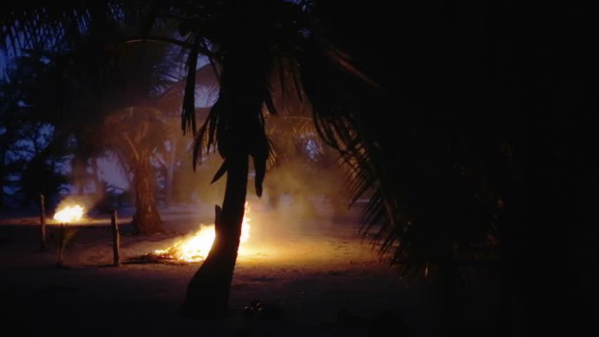 Bonfire on the beach at dusk #5901461