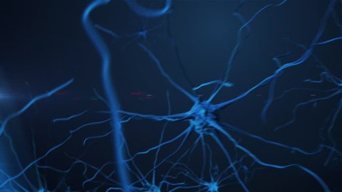 camera movement through the brain cells - neurons