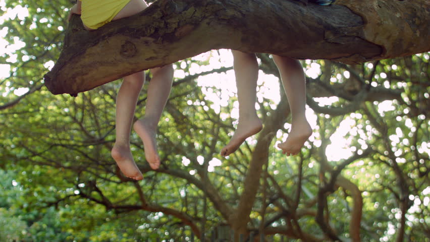 A Little Girl And Boy Sit In A Tree And Swing Their Feet