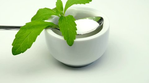 Stevia rebaudiana the herbal support for sugar on a turntable