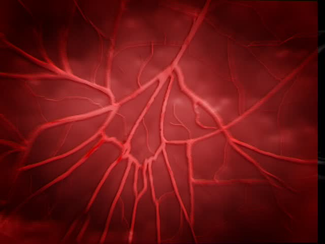 heart beat and zoom into blood vessel