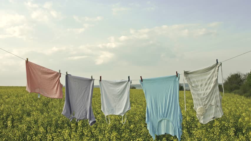 Summer Field Clean Clothes Line Nature Living Concept
