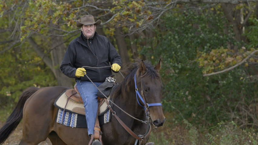 A cowboy rides a horse in a field, in slow motion