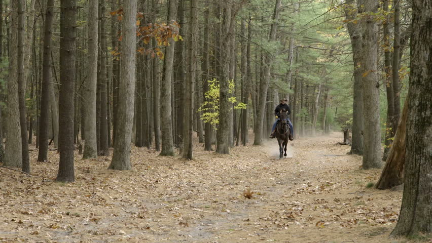 A man rides a horse through the woods towards the camera