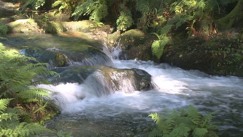 Pure fresh water waterfall in forest