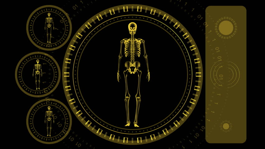 Skeleton Scan Screen - Hi-tech 15 (HD) - 3D animation. Medical, scientific, sci-fi, crime or hi-tech background. Screen with spinning skeleton and spinning rings. Alpha included. Loop.
