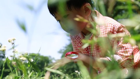 Japanese young boy playing with magnifying glass in a park, Tokyo, Japan