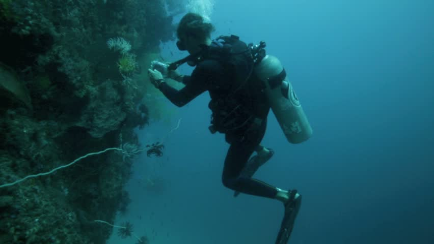 ROTE, WEST TIMOR, INDONESIA - JUL 25: Scuba diver taking photos of lionfish on July 25, 2014 in Rote, West Timor, Indonesia | Shutterstock HD Video #7028254