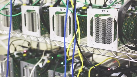 Row of bitcoin antminers set up on the wired shelfs