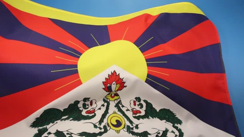 Stock Video Of The Tibetan Flag Snow Lion Flag 7172881