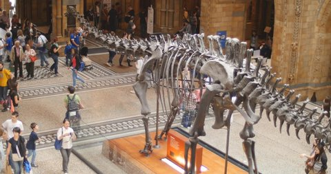 Main hall in Natural History museum in London. School holidays. London. June 2014.