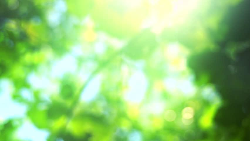 Picsart Blur Backgrounds Full Hd 1080p Ataccs Kids