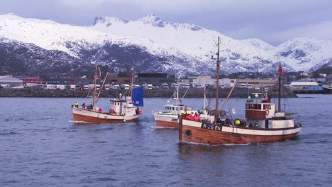 NORWAY - CIRCA 2014 - A large fleet of traditional commercial fishing boats sails out to sea from Norway in the Lofoten Islands.