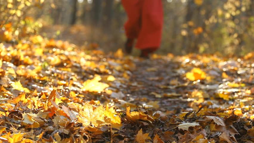 girl running in an autumn park hd stock footage clip - Growing Halloween Pumpkins